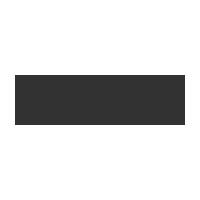 nyspins-casino-logo